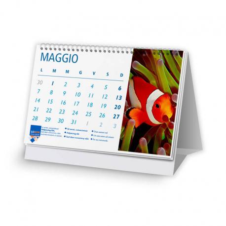 Calendario 21x14,8 - fogli 12+1
